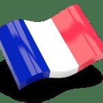 Français powersuite logiciel seo